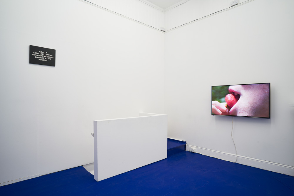 Tropical Hangover, Installation view with works by Laure Prouvost. Tenderpixel. Photo by Original&theCopy.