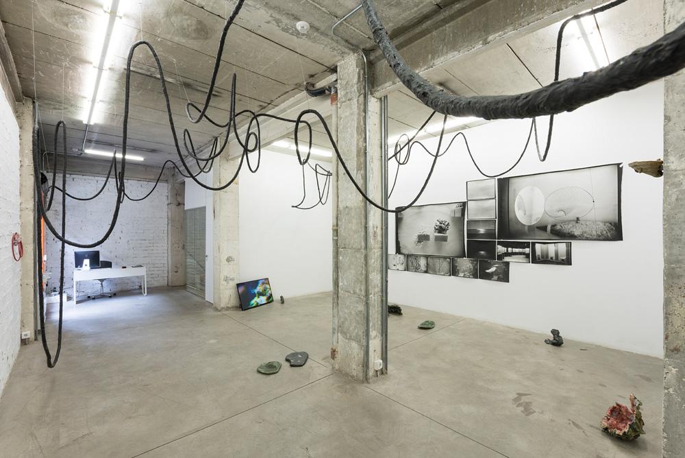 Mushrooms on the Ruins, Installation view, Iza Tarasewicz, Salvatore Arancio