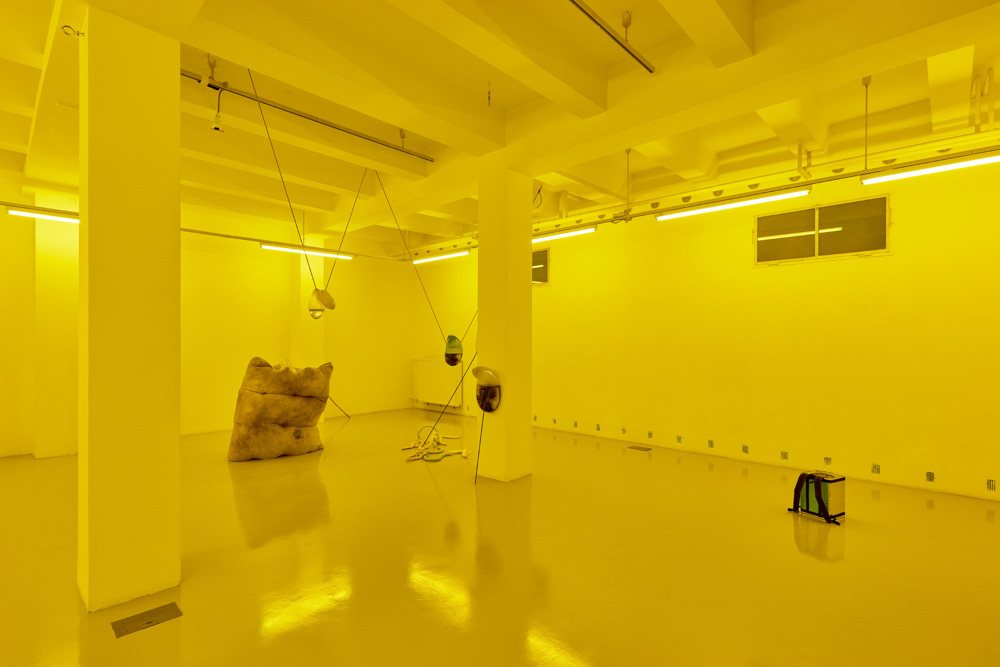 Installation view, Julia Crabtree and William Evans, Adrien Missika