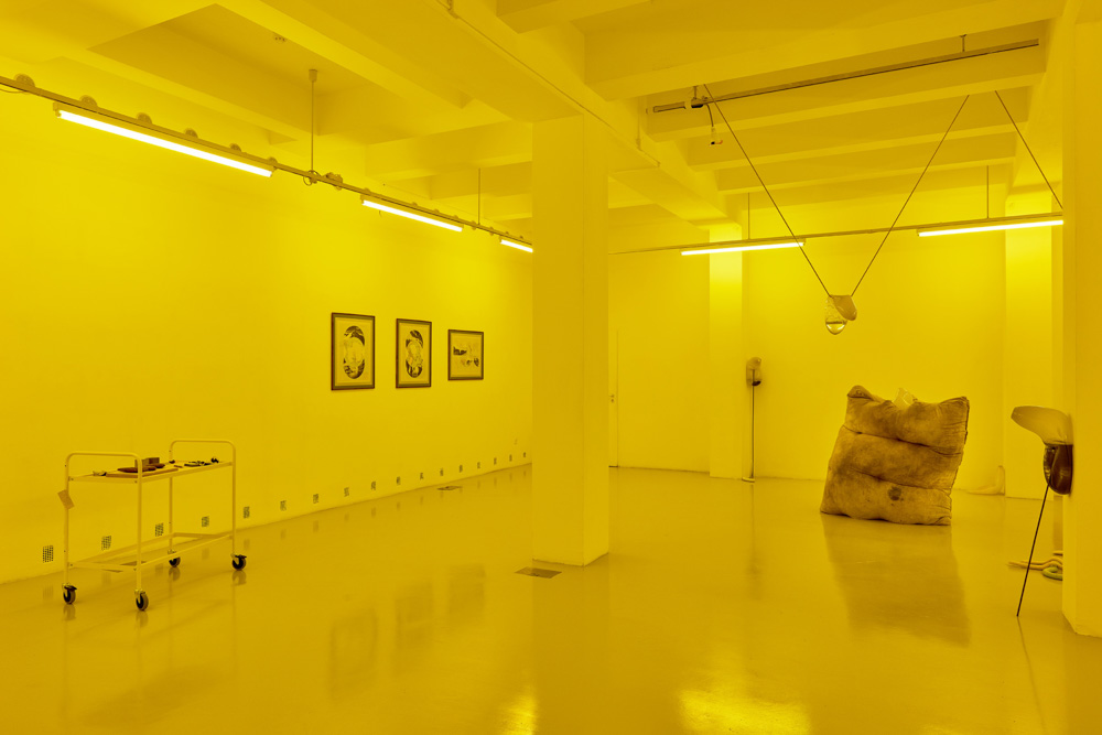 Installation view, Julia Crabtree and William Evans, Elena Damiani
