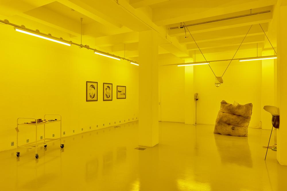 Installation view, Julia Crabtree and William Evans, Elena Damiani