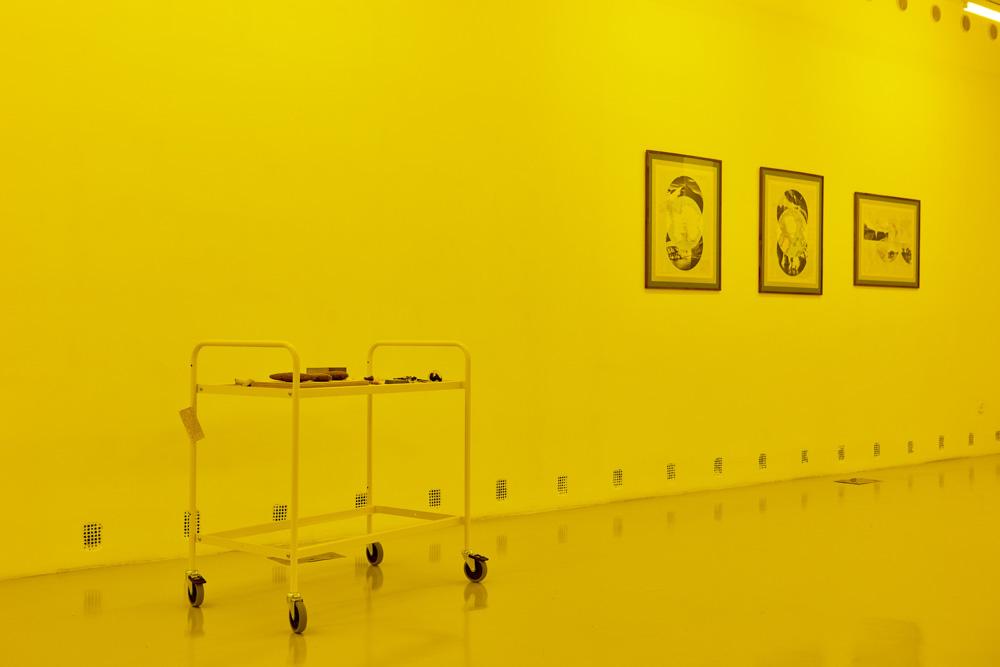 Installation view, Rowena Harris, Elena Damiani