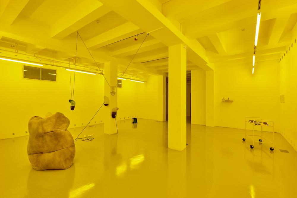 Installation view, Julia Crabtree and William Evans, Adrien Missika, Rowena Harris