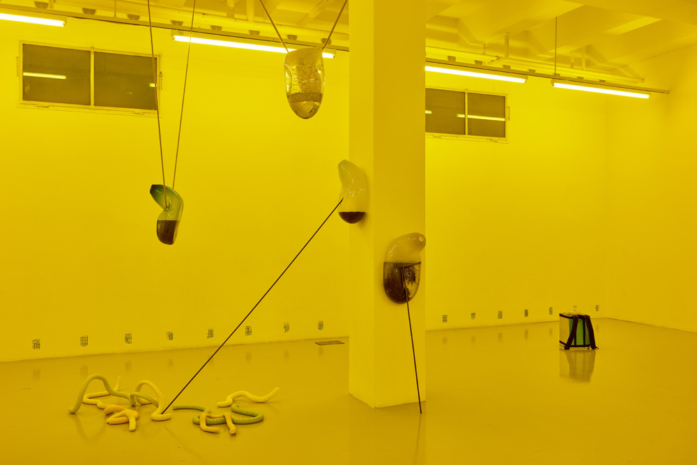 Installation view, Julia Crabtree and William Evans, Adrien Missika