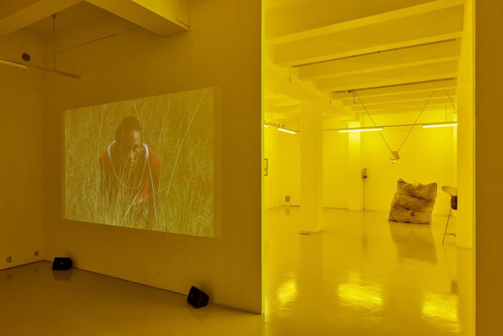 Installation view, Ana Vaz, Julia Crabtree and William Evans, Elena Damiani
