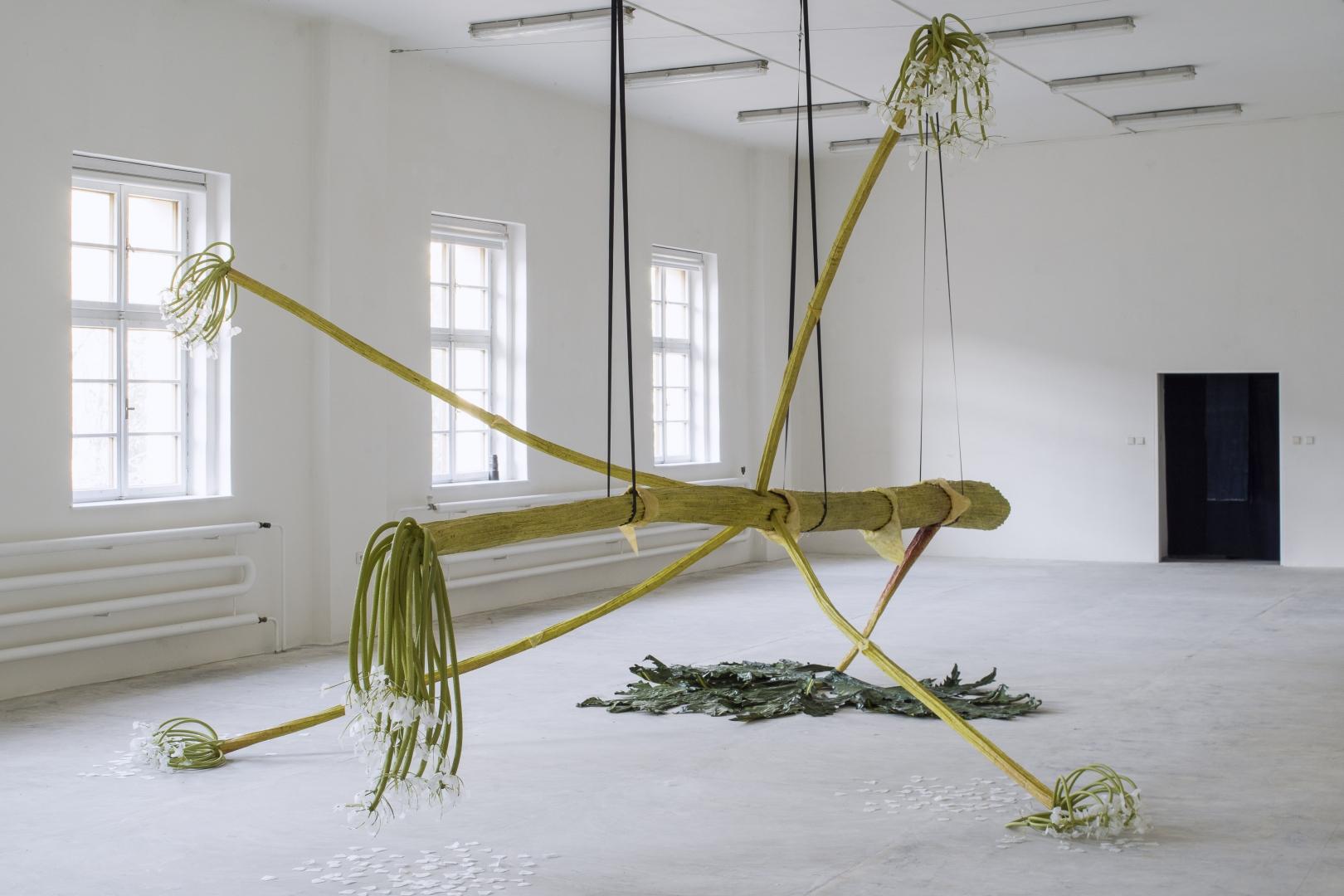 Ingela Ihrman, The Giant Hogweed, Karlin studios, Prague, Borbala Soos